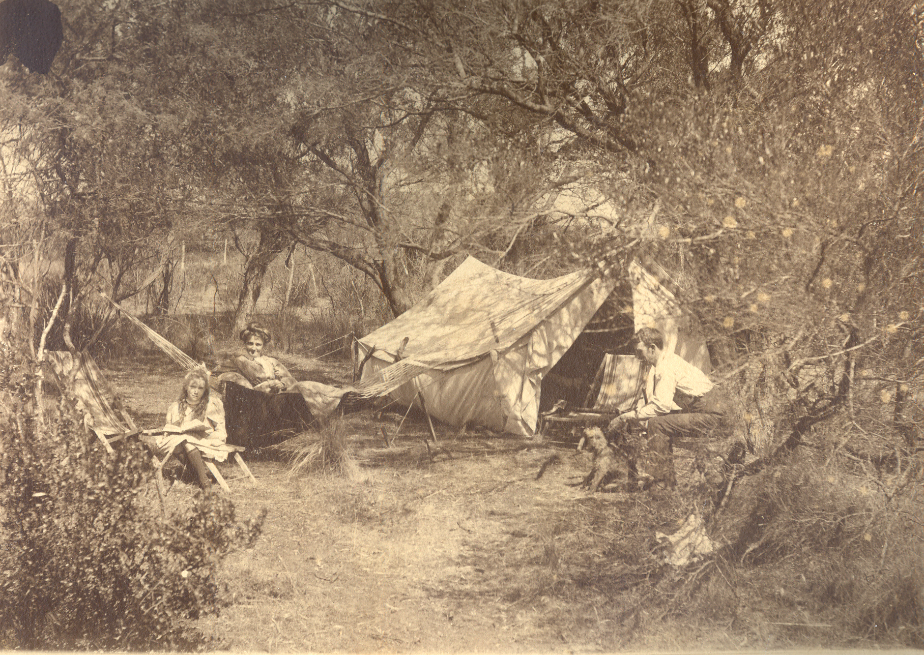 Maydena Australia  City pictures : ... and Gilbert Rowntree camping at 'Maydena', Sandford, Tasmania, c. 1910
